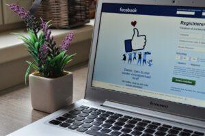 Das Foto zeigt ein Laptop und daneben eine Pflanze